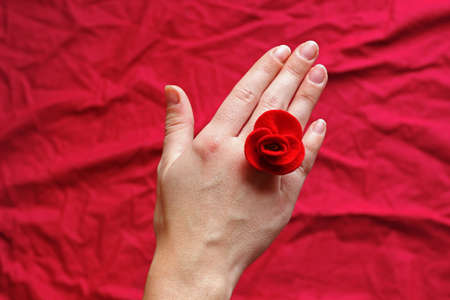 hand of a young woman with a red felt rose between her fingers, red background