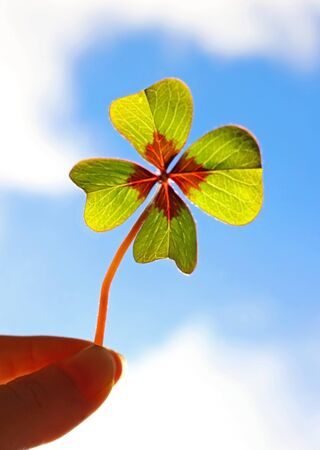 four-leafed clover, held by two fingers in front of blue and white sky, back lit
