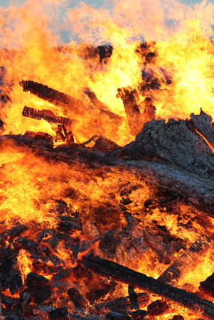 Large fire with burning tree trunks, bonfire at Midsummers Eve