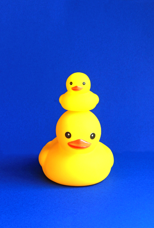 large rubber duck with a small duckling on its head,