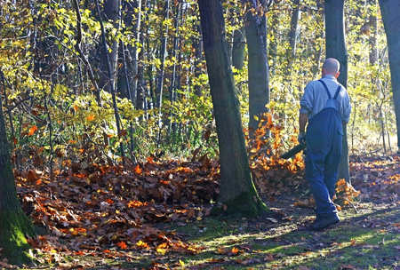 man in work trousers using a leaf blower on a plot at the edge of woodland