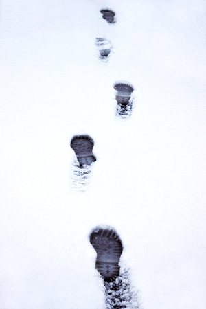 footprints in untouched snow