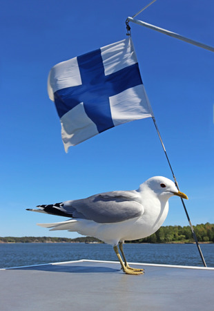 seagull sitting on a ship deck in front of a finnish flag, sunny coast in the background
