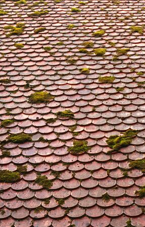 old roof, tiles partly covered with moss