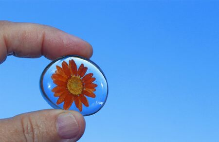 fingers holding an orange colored flower embedded in resin in front of clear sky Banque d'images