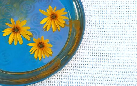 metal tray with three yellow blossoms on a white tablecloth, background with copy space