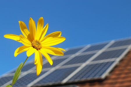 Photovoltaic system on the roof of a residential building, sunflower in the foreground, background with copy space Stockfoto
