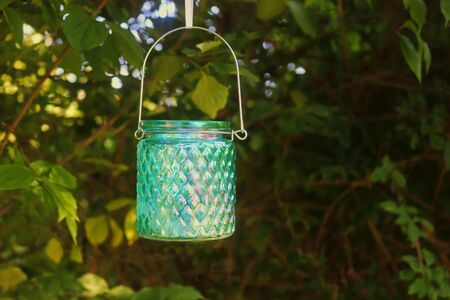 green shimmering glass lantern hanging in a bush in a garden, background with copy space Stockfoto