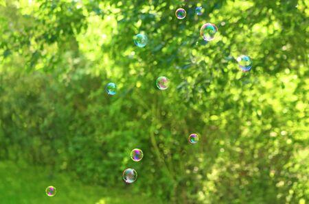 irisdescent soap bubbles floating through a green and bright garden