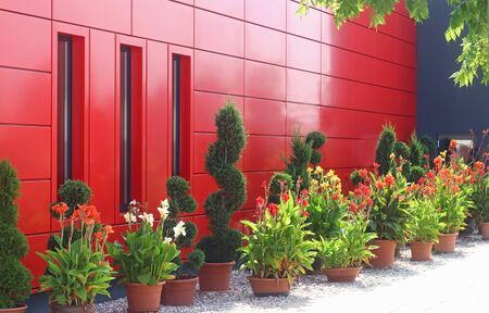 red and black building decorated with large green or red blooming flower pots Stockfoto