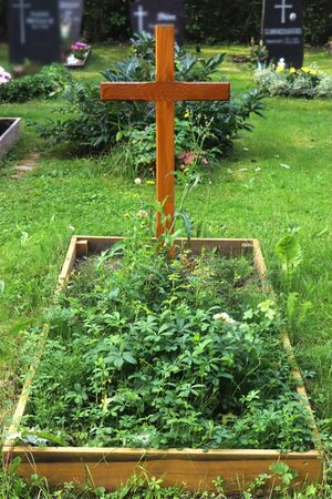 neglected tomb covered with weed in a cemetery Banco de Imagens