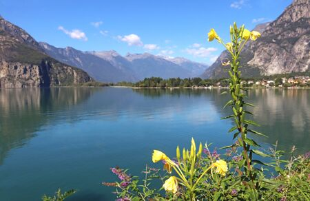 beautiful lake, surrounded by mountains, on a sunny summer day, yellow blooming flowers in the foreground