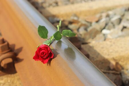 red rose lying on a railroad track, farewell symbol