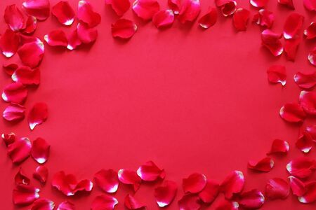 romantic greeting card with leaves of red roses building a frame on a red background with copy space