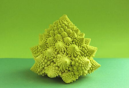 head of a decorative romanesco cauliflower on a green background with copy space Imagens