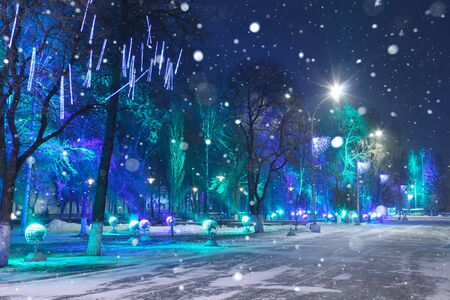 Christmas decoration in a city park by night