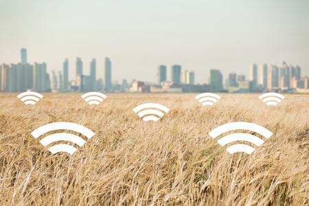 현대 도시의 배경에 밀의 필드입니다. 농업 분야의 디지털 기술. 똑똑한 농업 개념
