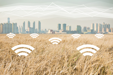 A field of wheat on the background of the modern city. Digital technologies in agriculture. Smart farming concept