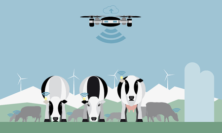 Drone counts cows. Robot shepherd. Internet of things in agriculture. Vector illustration
