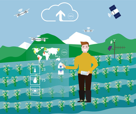 man controls the process of growing rice in the field. Display with augmented reality data. Technology in agriculture, vector illustration. Illustration