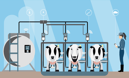 Internet of things on dairy farm. Herd management and automatic milking.