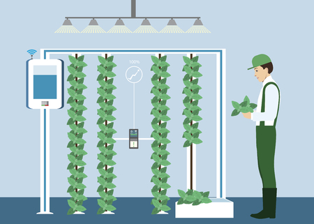 Growing plants on the field smart farm with wireless control. Ecology farm with system and irrigation system. Technology in agriculture vector illustration. Stock Vector - 98110432