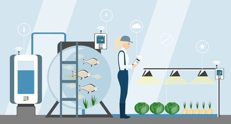 Growing plants on the field smart farm with wireless control. Ecology farm with system and irrigation system. Technology in agriculture vector illustration.