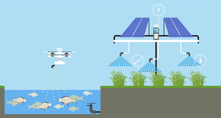 Growing plants on the field smart farm with wireless control ecology farm with system and irrigation system. Technology in agriculture vector illustration.