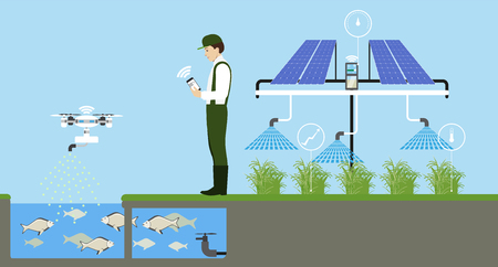 Growing plants on the field. Smart farm with wireless control. Eco farm with aquaponics system and irrigation system. Technology in agriculture. Vector illustration. Çizim