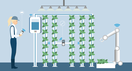 Growing plants on the field. Smart farm with wireless control. Eco farm with aquaponics system and irrigation system. Technology in agricultere. Vector illustration.