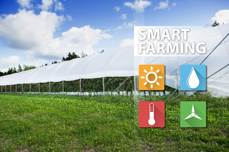 Greenhouse with information symbols. Internet of things in agriculture technology and smart farming concept. Фото со стока