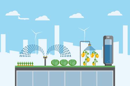 Städtische landwirtschaft. Anbau von Bio-Lebensmitteln auf dem Dach eines Gebäudes in der Stadt