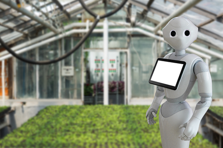 The robot is working in a greenhouse. Smart farming and digital agriculture