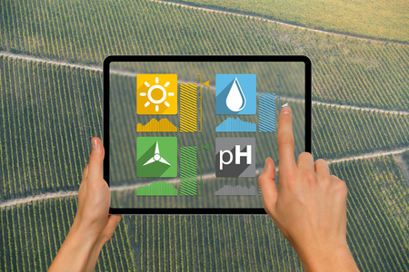 A farmer is holding a tablet on the background of a vineyard. Smart farming and digital agriculture concept
