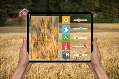 A farmer is holding a tablet. Smart farming and digital agriculture concept