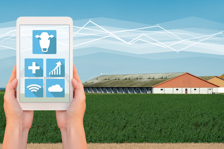 Modern farm with wireless control. Smart farming.