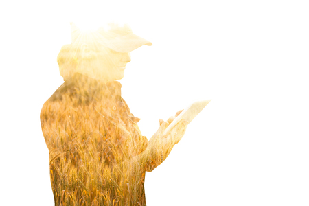 Woman farmer with tablet. Double exposure with wheat field. Smart farming and digital agriculture concept. Stock Photo