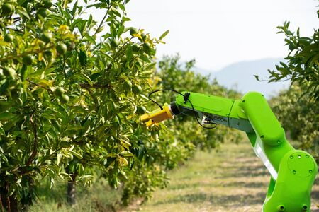 Robot arm is working in the smart farm