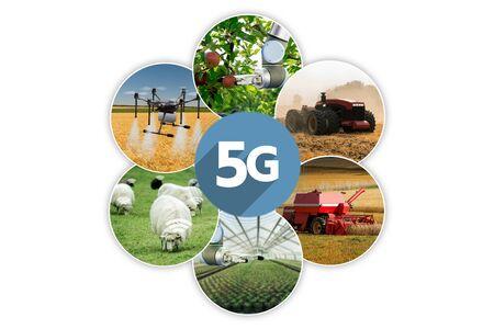 5G network for control smart farm Stok Fotoğraf