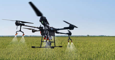 Agricultural drone flies over the corn field. Smart farming and precision agriculture