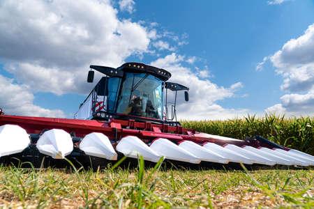 Combine harvester on a corn field