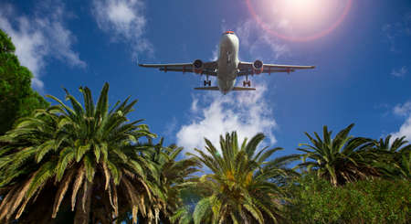Palm trees on the background of the plane in the sky. Summer traveling concept Stock fotó