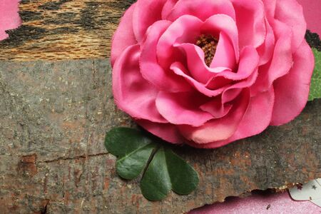 flower on wooden tray, romantic and sweet