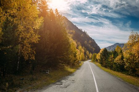 Asphaltbergstraße unter den gelben Herbstbäumen und hohen Felsen, in den hellen Strahlen der Sonne Roadtrip zu den schönsten Orten Russlands.