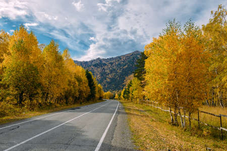 Asphalt mountain road among the yellow autumn birches and high rocks under beautiful cloudy sky.