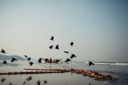 Fishermen next to a wooden boat on the shore-view from afar. In the foreground, a fishing net on the sand and a flock of flying birds. Weekdays in a fishing village in India.