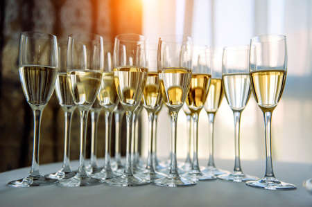A row of glasses filled with cold champagne lined up, ready to be served. Glasses with Martini on the table - party background. Welcome drink on the wedding ceremony.