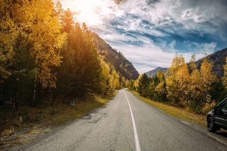 Asphaltbergstraße zwischen den gelben Herbstbirken und hohen Felsen in hellen Strahlen der untergehenden Sonne. Konzept des Aktiv- und Automobiltourismus. Standard-Bild