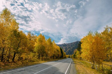 Asphalt mountain road among the yellow autumn birches and high rocks under beautiful cloudy sky.  版權商用圖片