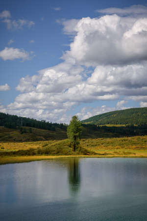Amazing view from the shore of mountain lake on sunny summer day. Green meadows, blue water surface under clear sky with white clouds. The best natural backgrounds. Vertical image.